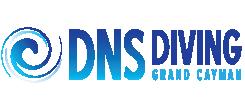 dns-logo